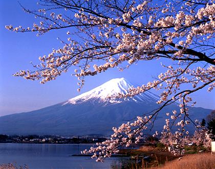 [Image: japan_1.jpg]