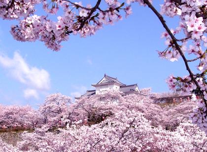 [Image: japan_6.jpg]
