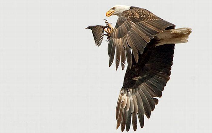 عکس های منتخب روز 15 تیر www.TAFRIHI.com