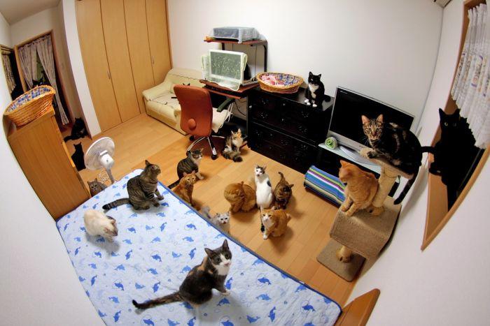 عکس های منتخب روز 16 تیر www.TAFRIHI.com
