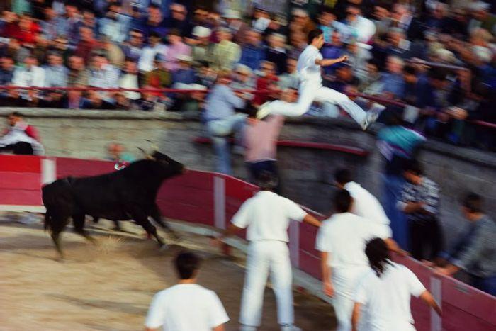 عکسهای منتخب روز 2 مرداد www.TAFRIHI.com