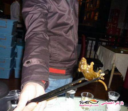 پیدا شدن یک موش پخته شده در سوپ یک زن!! (+عکس) www.TAFRIHI.com