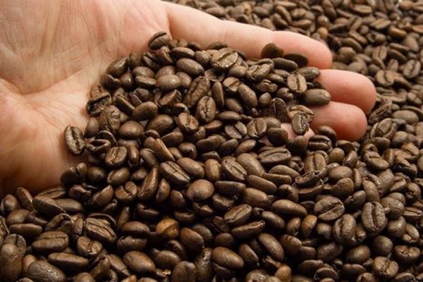 موزه قهوه
