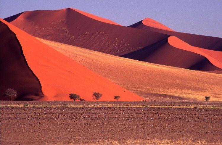 Namib کویر ، نامیبیا