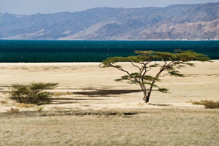 دریاچه Turkana ، کنیا