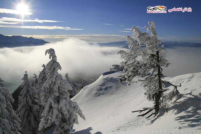 عکاسی در زمستان,عکاسی در برف,منظره برفی,عکس پروفایل برفی
