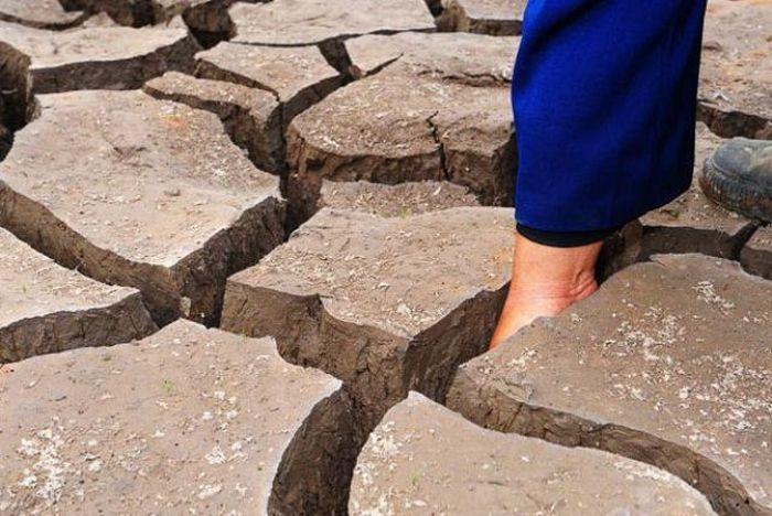 عکسهای منتخب روز 17 مرداد www.TAFRIHI.com