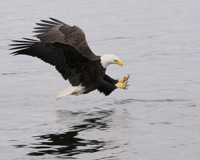 عکسهای منتخب روز 20 مرداد www.TAFRIHI.com