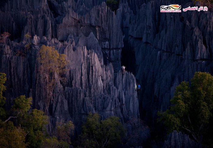 [Image: Madagascar_12.jpg]