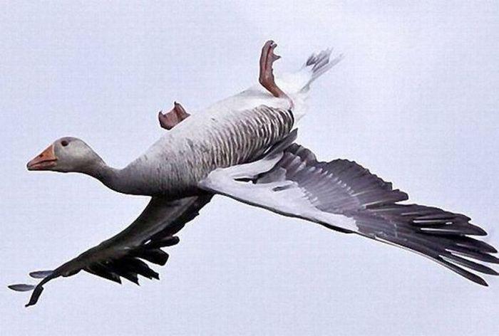 عکس های منتخب روز 25 آبان www.TAFRIHI.com