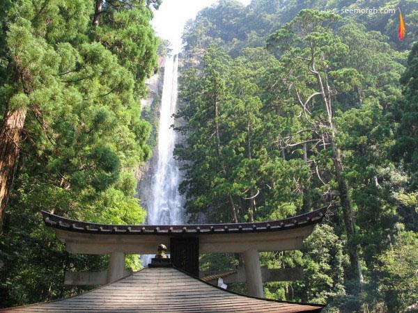 آبشار ناچی