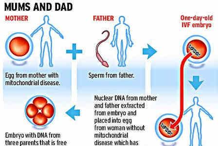 خبری جالب : یک نوزاد با دو مادر و یک پدر! + عکس | Bia2Model.COm