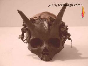 کشف باستانی,کشف عجیب,جمجمه, جمجمه شاخ دار