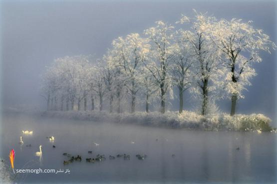 عکسهای بسیار زیبای یک عکاس آماتور! www.TAFRIHI.com