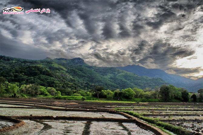 روستای سریلانکا