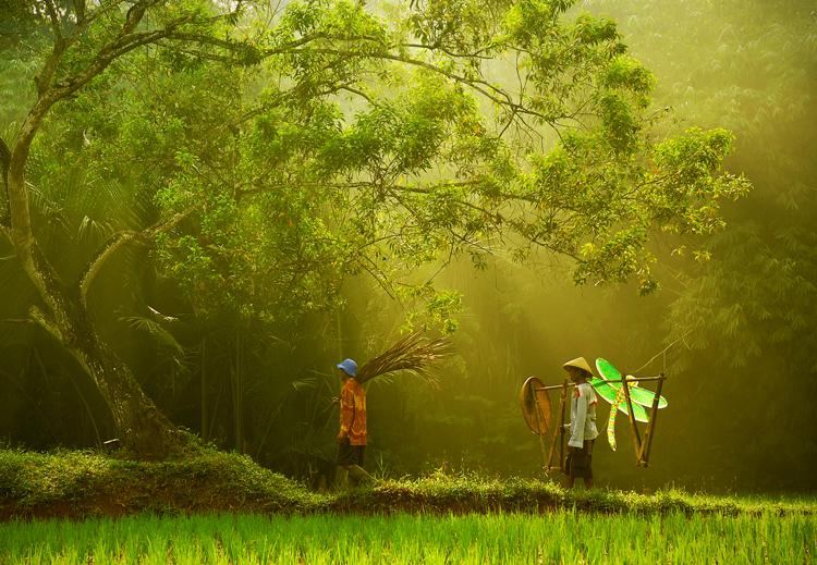 عکسهای منتخب روز 25 آبان www.TAFRIHI.com