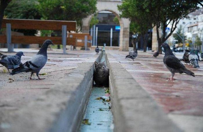 عکسهای منتخب روز 21 شهریور www.TAFRIHI.com