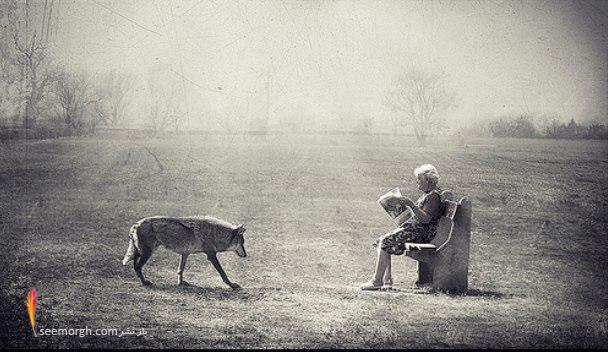[Image: artistic-surreal-photomanipulation-by-sa...ban-31.jpg]