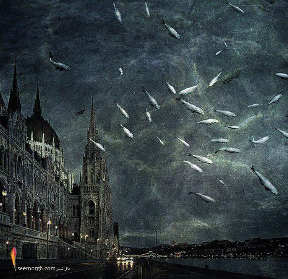 [Image: artistic-surreal-photomanipulation-by-sa...ban-32.jpg]