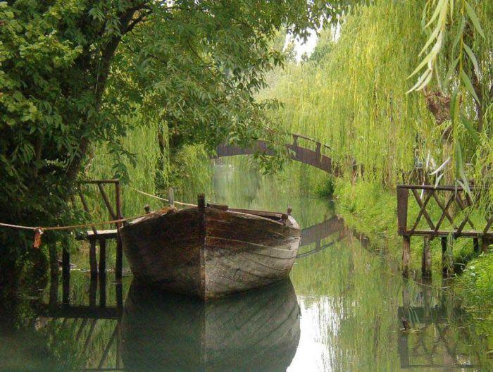 عکسهای منتخب روز 22 آذر TAFRIHI.com