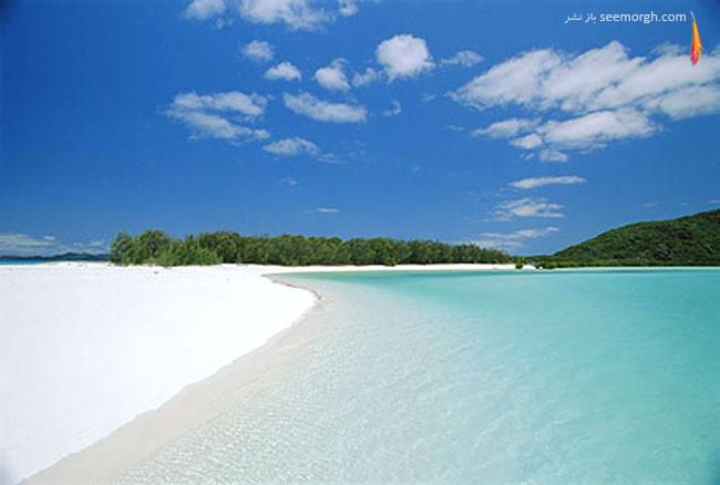 جزیره بهشت سفید، استرالیا
