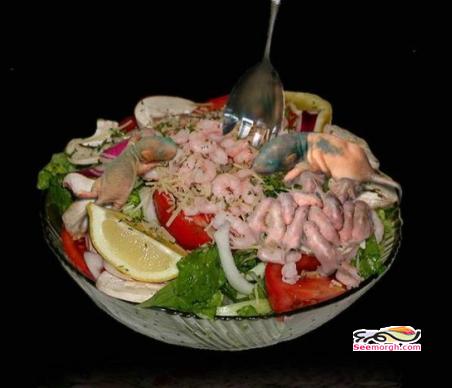تصاویر غذاهای عجیب چینی!! www.TAFRIHI.com
