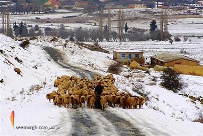 [Image: morocco-winter.jpg]
