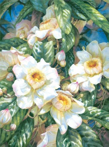 http://www.seemorgh.com/uploads/1391/03/Watercolor_Paintings_by_Darryl_Trott_9.jpg