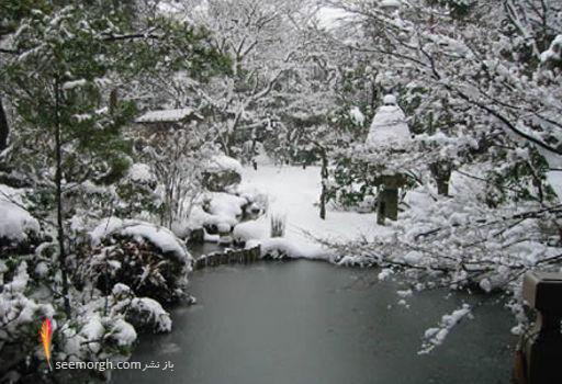 http://www.seemorgh.com/uploads/1391/04/Rypan-ji-2.jpg