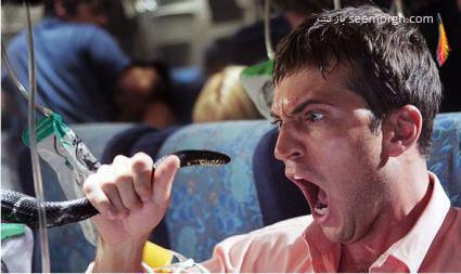 مارها در هواپیما