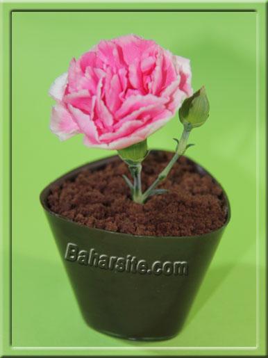 دسر گلدانی,مرحله چهاردهم تهیه دسر گلدانی
