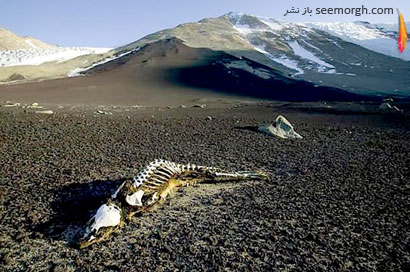 [Image: Dry-Valleys-Antarctica-3.jpg]