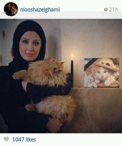 تصاویر عزاداری نیوشاضیغمی برای گربه از دست رفته اش