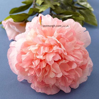 زبان گل ها,برای کسی که دوستش داریم چه گلی بخریم,معنای هر گل در رابطه,پیئونی صورتی