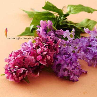 زبان گل ها,برای کسی که دوستش داریم چه گلی بخریم,معنای هر گل در رابطه,یاس بنفش