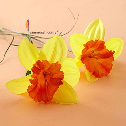 زبان گل ها,برای کسی که دوستش داریم چه گلی بخریم,معنای هر گل در رابطه,نرگس زرد