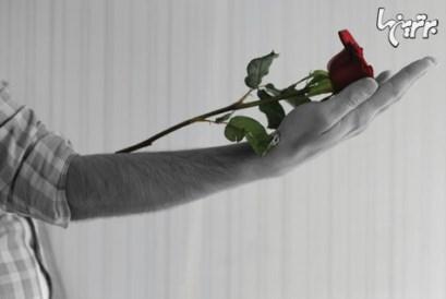 هدیه دادن,گل,هدیه دادن گل,آداب هدیه دادن گل را بیاموزید,گل دادن مانند به آغوش سپردن نوزاد برای هدیه دادن