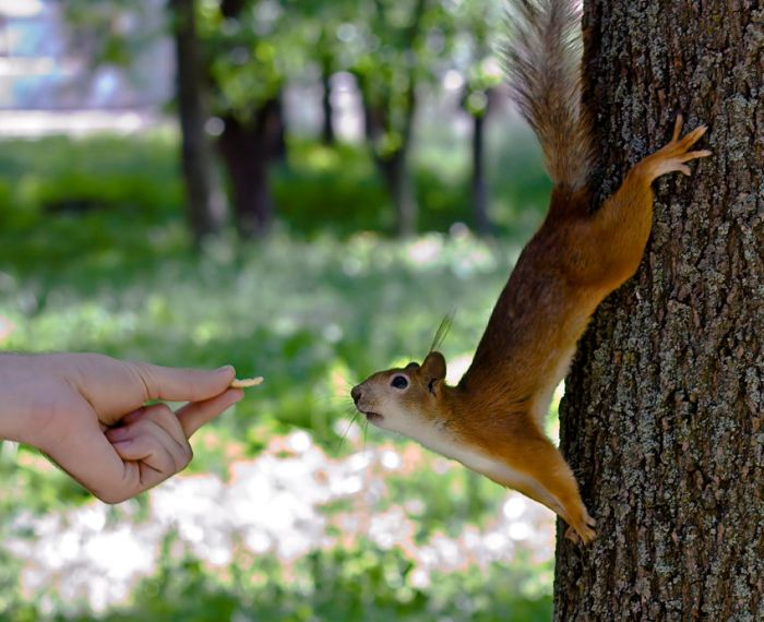 عکس های منتخب روز 23 مهر www.TAFRIHI.com