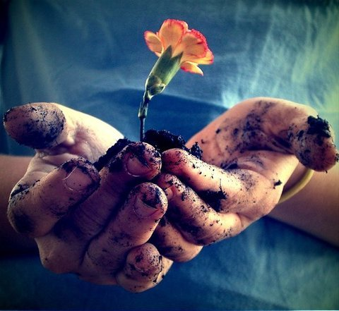 عکسهایی بسیار زیبا و تاثیرگذار از فصل بهار www.TAFRIHI.com