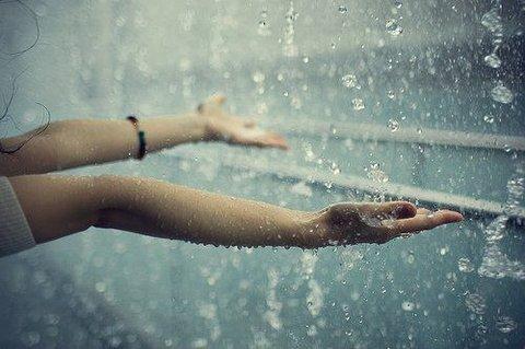 عكس ها از باران و شبنم و بهار www.taknaz.ir