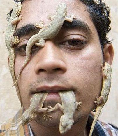 پسری که عاشقانه با مارمولکها در ارتباط است!! (+عکس) www.TAFRIHI.com