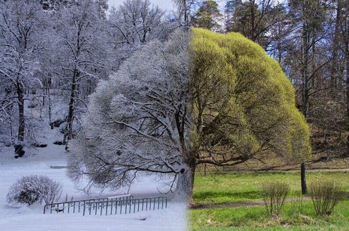 عکسهای منتخب روز 4 مرداد www.TAFRIHI.com