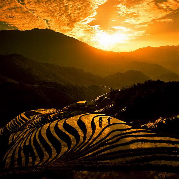 [تصویر: FengJiang_7.jpg]