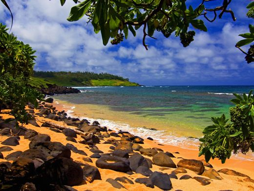 کائای، هاوایی