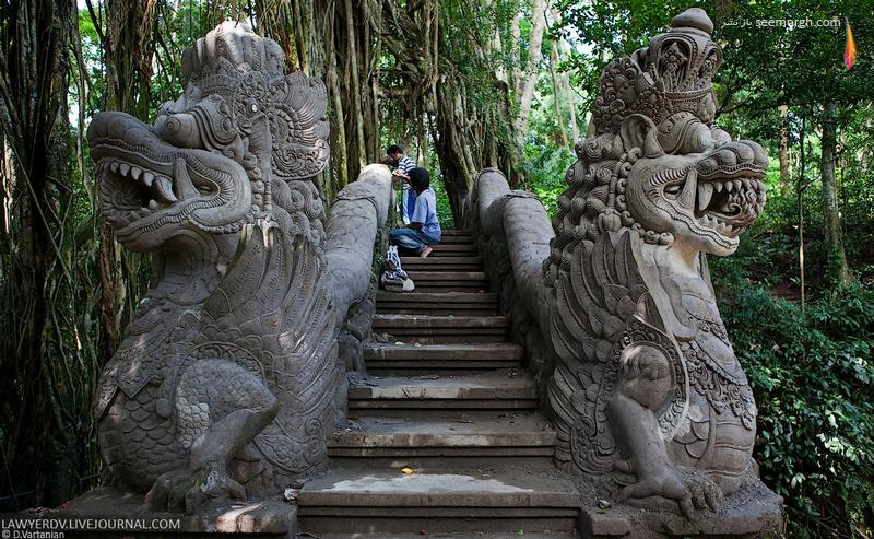 سفری تصویری به بالی جزیره زیبای اندونزی! www.TAFRIHI.com