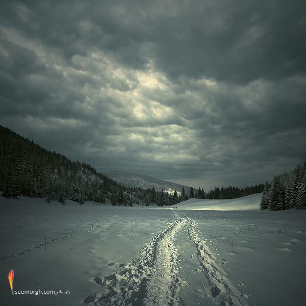 دنیای زیبا و شگفتانگیز یک هنرمند! (تصویری) www.TAFRIHI.com