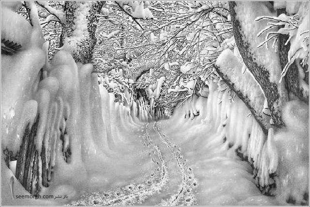 منظره برفی