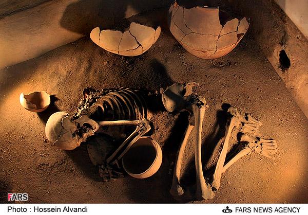 اسکلت بازمانده از انسانهای تاریخی در موزه هگمتانه همدان