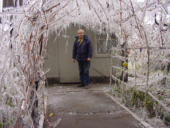 عکسهای منتخب روز 21 آذر TAFRIHI.com