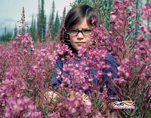 تصاویر کودکی و جوانی «سارا پالین»